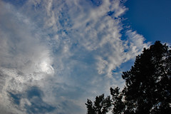 Clouds This Evening. (dccradio) Tags: lumberton nc northcarolina robesoncounty nikon d40 dslr outdoor outdoors outside nature natural august thursday evening thursdayevening goodevening sky bluesky cloud clouds cloudformation tree trees branch branches treebranch treebranches treelimb treelimbs