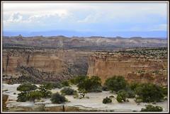 Somewhere in Utah (WendieLarson) Tags: utah landscape landscapes nikon nikond7000 scenic scenery