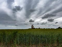 Attendre encore (Faapuroa) Tags: france2019 moulin blé ciel moisson wheat harvest sky mill coolpix p1000 nikon