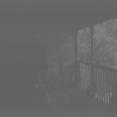 Back Verandah (Matthew Paul Argall) Tags: 120film 120 mediumformat blackandwhite blackandwhitefilm ilforddelta100 100isofilm squareformat squarephoto