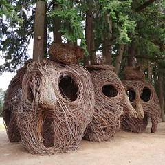 #willow & #dogwood #woven #sculpture #face #head #😱 #park #oregonTucked into a #grove of #douglasfir ... #wovensculpture #willowweaving #playstructure#publicart #woven #sculpture(s) by #patrickdougherty, see more of his work at #stickwork.net (Heath & the B.L.T. boys) Tags: instagram art face park