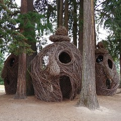 #willow & #dogwood #woven #sculpture #face #head #😱 #park #oregonTucked into a #grove of #douglasfir ... #wovensculpture #willowweaving #playstructure#publicart #woven #sculpture(s) by #patrickdougherty, see more of his work at #stickwork.net (Heath & the B.L.T. boys) Tags: instagram oregon face art park