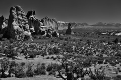 I Find in Nature a Beautiful Home (Black & White, Arches National Park) (thor_mark ) Tags: archesnationalpark azimuth139 blackwhite blueskies canyonlands capturenx2edited centralcanyonlands colorefexpro coloradoplateau day6 desert desertlandscape desertmountainlandscape desertplantlife highdesert intermountainwest lasalmountains landscape largebushes layersofrock lookingse mountainpeaks mountains mountainsindistance mountainsoffindistance nature nikond800e outside portfolio project365 rockformations snowonfaroffmountainpeaks snowcapped sunny thewindowstrail trees utahhighdesert utahnationalparks2017 windowsprimitivelooptrail windowssection ut unitedstates