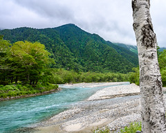Kamikochi Azusa River (shinichiro*) Tags: 松本市 長野県 日本 20190706dsc8531 2019 crazyshin nikonz6 z6 nikkorz2470mmf4s july summer 大正池 kamikochi nagano japan jp autoisospeedupper3200 candidate 48548184531