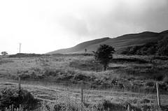 Scotland00251.jpg (thalgyur) Tags: kodaktrix400 leicam7 scotland scotland2014 imagicaslab bw 35mm 2014 noritsuls600