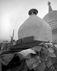1388 (The Dent.) Tags: kham china eastern tibet mamiya 7ii techpan hc110 10mins 179