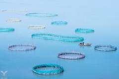 Fisherman's Blue Dream (DanielKHC) Tags: china xiapu fujian fisherman fishing nets landscape nikon d850 dreamy blue published practical photography nikkor 70200mm nisi nd filter long exposure boat