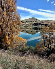 a glorious day in New Zealand (SM Tham) Tags: newzealand southisland lakehayes lake water mountains reflections trees shrubs bushes grass autumn fall sky landscape