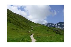 Follow me! (balu51) Tags: wanderung wanderweg landschaft berge schnee grün weiss blau hiking trail hill hillside mountain sky clouds summer warm sunny flums juli 2019 copyrightbybalu51