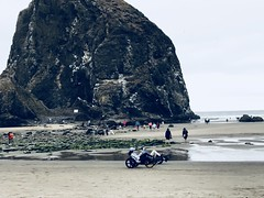 """AD117F68-EF97-48CC-887D-383A210971BC (komissarov_a) Tags: cannonbeach haystackrock oregoncoast 101 formations tidepools sunsets spectacular ocean viewpoints rocks attraction tides running hiking skyhigh scenic pacific west surprise beautiful sandy shoreline perfect wonderland remarkable refreshing unbeatable stunning scenery unforgettable vistas naturalareas komissarova streetphotography rgb iphone7 color rainforest downtown paradise dramatic enjoyable landscapes famous nationalgeographic magazine picturesque sidewalks artgalleries specialtyshops restaurants """"oneoftheworld's100mostbeautifulplaces 2019"""