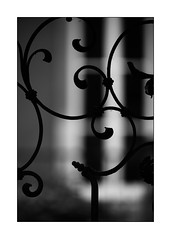 beautiful fence (Armin Fuchs) Tags: arminfuchs lavillelaplusdangereuse würzburg fence light shadow metal hff