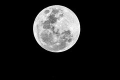 Full Moon (Merrillie) Tags: moonphases nightsky astronomy astrophotography moonlight night fullmoon moon nighttime galaxy moonsurface lunar