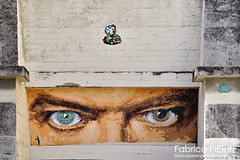 Lyon - Rhône Alpes (France) (contact@fabricepierre-photographe.com) Tags: lyon rhône alpes france streetart graffiti art urbanart graffitiart street streetphotography mural photography artist