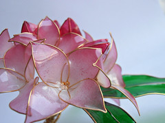 Daphne odora (vasilevanastyus) Tags: daphne odora hair pin kanzashi handmade resin epoxy pink flowers natural style