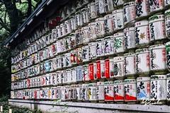 2019.07 Meiji Shrine, Yoyogi Park, Tokyo (3AbroadPhotography) Tags: 3abroadphotography japan japanstreet japanstreetphotography mirrorlessrevolution mirrorlessrevolutionfujifilm fujiclassicchrome fujifilmjapan fujifilmxau fujifilmxaust fujifilmxseriesjapan fujifilmxt2 fujixaus fujixt2 harajuku meijishrine monochrome nippori people photography shitamachi shitamachipeople street streetphotographer streetphotography streetshadesofblack streettogs tokyometro tokyostreet tokyostreetphotography yoyogipark 2019 streetsobmystreet july tokyo