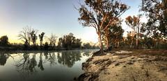 katarapko (liam.jon_d) Tags: australia australian billdoyle cameraphone iphone iphone7 iphone7plus morning panorama panoramic panoramiclandscape peace peaceful phonecamera reflection sa southaustralia southaustralian sunrise