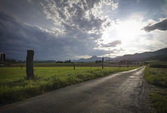 street view - Sony RX0M2 (Andreas Voegele) Tags: sony sonyrx0ii sonydscrx0 rx0m2 rx0ii light street lightroom andreasvoegelephoto landscape nature natur sun