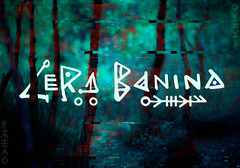 Some lettering logo for the wonderful singer Lera Banina  I made it in collaboration with Lisova Mavka  The main idea is the use of northern runes and Scandinavian ornament. (evgenimoryakov) Tags: branding calligraphy customtype design folk handlettering handtype lettering letters logo logodesign logotype mono runes scandinavian script typography vector