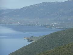 Λίμνη Τριχωνίδα!!   P1080305 (amalia_mar) Tags: λίμνη τριχωνίδα αιτωλοακαρνανία ελλάδα φύση μπλε πράσινο χλωρίδα lake trihonida aitoloakarnania greece nature blue green flora colorfulnature bluefriday sundaylights