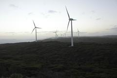 (tesneddon) Tags: dusk coast turbine windfarm albany