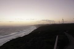 (tesneddon) Tags: turbine dusk coast windfarm albany