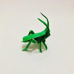 #origami #papiroflexia #paper #종이접기 #종이 #紙 #おリがみ #papercraft #paperart #papersculpture #papel #creacionesorigami #paperfolding #grillo #cricket #grilo #蛬 #蟋 #cricketinsect #크리켓 #insect #OrigamiInsect #insecto #insectodepapel #bug #origamibug (rodrigo_s_j) Tags: origami papiroflexia paper 종이접기 종이 紙 おリがみ papercraft paperart papersculpture papel creacionesorigami paperfolding grillo cricket grilo 蛬 蟋 cricketinsect 크리켓 insect origamiinsect insecto insectodepapel bug origamibug