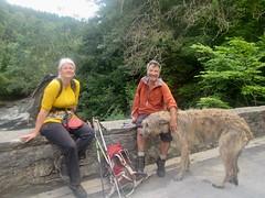 At the Fenderbridge in Glen Tilt (andywalker1) Tags: andrewwalker karhu wolfhound fenderbridge glentilt