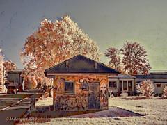 Chronic Graffiti (markbangert) Tags: graffiti hut water supply transformer defaced fuji xt1 infrared infrarot infrarouge 700mn