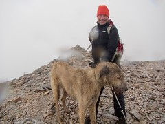 Carn Chalamain (andywalker1) Tags: andrewwalker carnchalamain karhu wolfhound