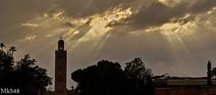 Douceur orientale (paul.porral) Tags: flickr ngc paysage landscape ciel cielo sky clouds nuages lumière sunshine sun countryside outside maroc marrakech sunset morocco orient maghreb sunrays