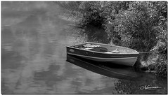 "AUGUST 2019 NGM_2494_9076-1-222 (Nick and Karen Munroe) Tags: boat shoreline munroe karen shore elora eloragorge eloramill nickandkaren karenandnick eloraontario thegrandriver aluminumfishingboat elorafalls karenick karenick23 karenandnickmunroe karenmunroe elorahistoricmill elorahydropower blackandwhite bw ontario canada nature landscape outdoors photography blackwhite nikon nick d750 f28 brampton ontariocanada 2470 2470f28 bramptonontario nikon2470 nikon2470f28 nikonf28 munroedesignsphotography munroedesigns nickmunroe nikond750 nickandkarenmunroe munroenick munroephotoghrpahy monochrome mono bandw foot aluminum boat"" ""14 14footaluminumboat"