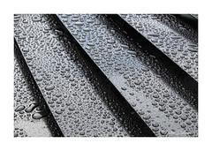 More raindrops (PeteZab) Tags: rain drops wet step layer grill diagonal pattern peterzabulis