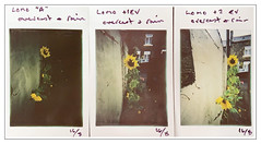 LOMO TEST STRIP (Father Pie) Tags: lomography instant instantphotography instax