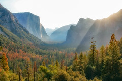Sunrise In The Valley (Robert F. Carter) Tags: yosemite yosemitenationalpark nationalparks yosemitevalley valley valleys outdoors morning earlymorning earlymornings sunrise sunup sunrises sunups dawn dawns elcapitan halfdome