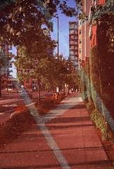 Portland (Multiple Exposure) (goodfella2459) Tags: nikonf65 fujifilmprovia100f 35mm e6 slidefilm analog color colour city streets trees buildings multipleexposure doubleexposure experimental abstract portland oregon