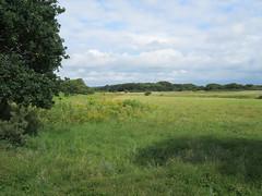 Egmond aan Zee (Elisa1880) Tags: landscape landschap veld field egmond noordholland aan zee