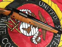 Remington 700 - Reblued