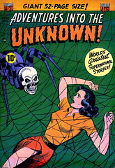 Adventures Into The Unknown #33 (1952), cover by Ken Bald (gameraboy) Tags: adventuresintotheunknown 33 1952 cover kenbald 1950s spider skull woman vintage art illustration comics comicbook comicbookcover horror