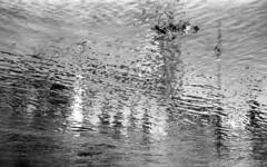 Atlantis (Paolo Levi) Tags: adige river fiume water reflection verona italy canon ae1program 85mm fd fp4plus ilford foma