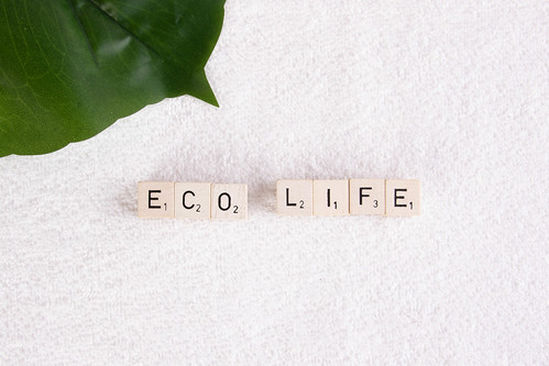 Tropical leaf with eco life text on towel