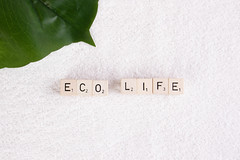 Tropical leaf with eco life text on towel (wuestenigel) Tags: eco bamboo clean text towel organic ecofriendly ecology health ecolife hygiene background healthy white noperson keineperson paper papier retro abstract abstrakt empty leeren desktop texture textur nature natur space platz rough rau color farbe leaf blatt blank leer wallpaper tapete vintage jahrgang canvas segeltuch pattern muster design antique antiquität old alt