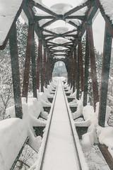 BEN_4816 (Ben Chen Photography) Tags: ç´è² japan nikon d810 travel snow