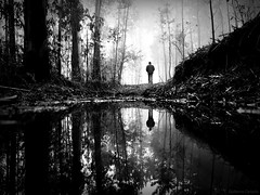 Old times (Guillermo Carballa) Tags: fog forest mist morning man men people pines puddles paths water woods bw alone carballa olympus em5 light winter rain