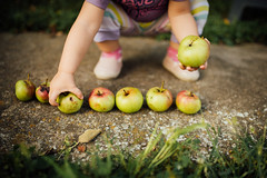 A little girl collecting apples from the concrete (Ivan Radic) Tags: apfel hand kind kleinkind apple apples athome baby catching caucasian childhood close closeup collecting communication concept conceptual concrete contact cute daughter diet family female food freshness game gift girl give gives green group healthy holding kleinesmädchen learn learning mom number park raw sammeln school toddler vegan vegetarian äpfel nikond610 sigma35mmf14dghsmart ivanradic
