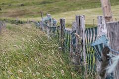 !...!...! (Gisou68Fr) Tags: clôture fence bois wood pré meadow montagne mountain