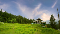 Gulmarg.......................India. (Rambonp:loves all creatures of this universe.) Tags: jk kashmir tulips flowers yellow red white green nature mountains tourist place house boats trees sky clouds crop orange boat landscape wallpaper paradise silhouette india canon birds sortie darkbirds water boatshouse boatsplants lake indira gandhi tulip garden reflection morningcrack day gulmarg