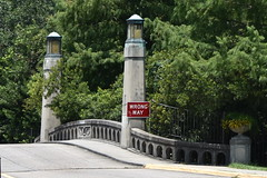 HFF Wrong Way! (Omunene) Tags: fence fencefriday wrongway railing guardrail bridge dreyfousdrive neworleans citypark planter vase trees