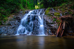 In the Jungle (Frank KR) Tags: jungle waterfall thailand water wasserfall trees longexposure longshot silent tranquility forest flickrtravelaward outside nature