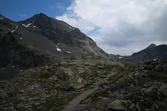 Fuorcla Val Champagna (Toni_V) Tags: m2401470 rangefinder digitalrangefinder messsucher leicam leica mp typ240 type240 28mm elmaritm12828asph hiking wanderung randonnée escursione oberengadin engiadinota engadin graubünden grisons grischun alps alpen switzerland schweiz suisse svizzera svizra europe trail wanderweg sentiero fuorclavalchampagna summer sommer ©toniv 2019 190810