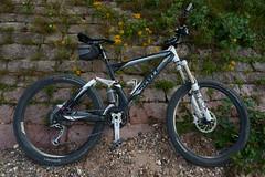 Biketour (Lutz Blohm) Tags: biketour scottgenius40 rhein rheinufer fahrradtour naturfoto sonyfe24105mmf4goss sonyalpha7aiii fluskilometer418